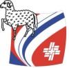 logo_stvschafisheim